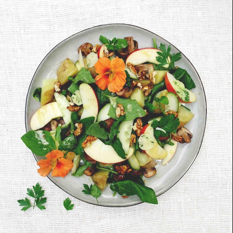 Salade Nieuw-Zeelandse spinazie