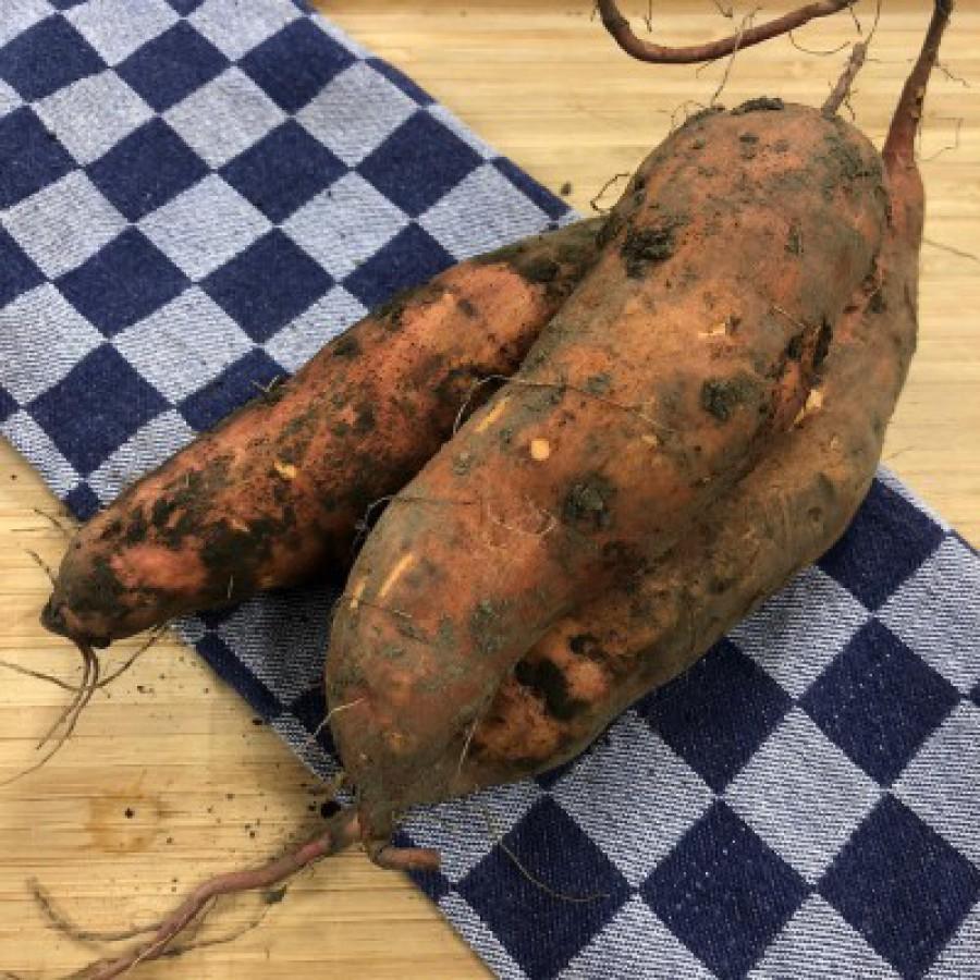 Wat doe je met... Zoete aardappel?