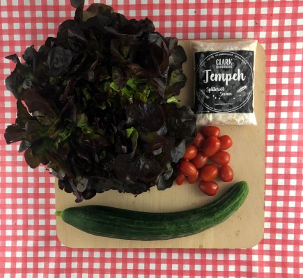 Lichte salade met tempeh