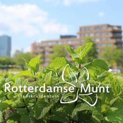Tuinwinkel Rotterdamse Munt