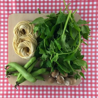 Verse spaghetti met tuinbonen